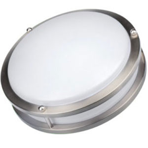 Ceiling Mounts and Flush Mounts